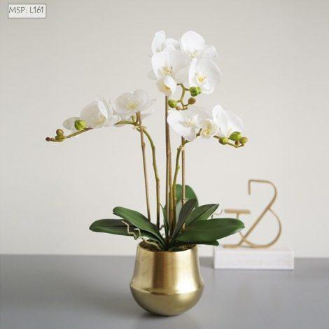 Lọ hoa mạ vàng